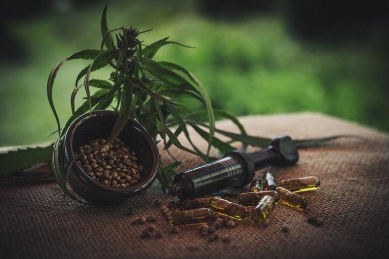 Różne rodzaje nasion występujące na rynku marihuany